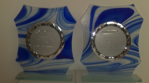 ocenenie samsung 2008